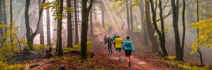 Joggen im Herbst, stimmungsvolles Waldpanorama