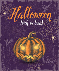 """Halloween celebration vintage background with hand drawn pumpkin, web and hand made quote ''Halloween. Trick or Treat"""". Lettering. Banner, flyer, brochure. Advertising"""