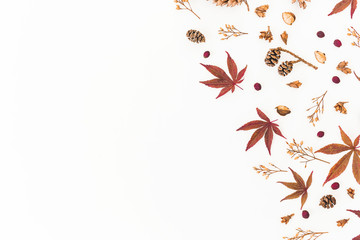 Frame made of autumn leaves, dried flowers and pine cones isolated on white background. Flat lay, top view, copy space.