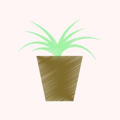 flat shading style icon flower in pot aloe