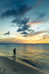 Wall Mural - Silhouette lone man at waters edge along beach at sunset.