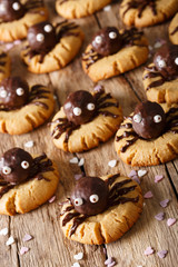 Festive chocolate spider cookies for Halloween. vertical
