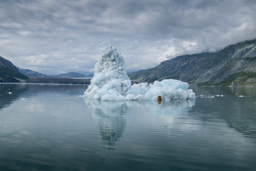 Iceberg Reflection, Glacier Bay