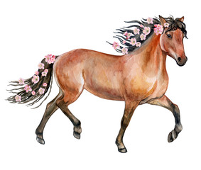 A brown horse with a flowering mane. Flowers and a horse. Watercolor. illustration