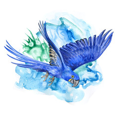 Hyacinth macaw on color background. A flying parrot. Watercolor. Illustration. Handmade. Design. Textiles, books, webdesign