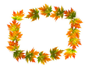 Frame of beautiful autumnal maple leaves on a white background with space for text. Top view, flat lay.