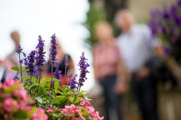 Älteres Ehepaar vor einem Blumenbeet