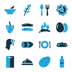 Set of 16 cooking bi-color icons