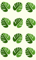 Tropical Rainforest Monstera Leaves Background