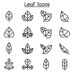 Leaf icon set in thin line style