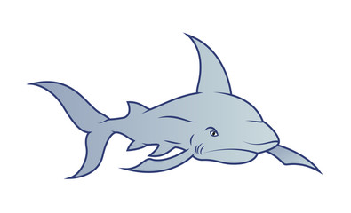 Shark Fish Vector