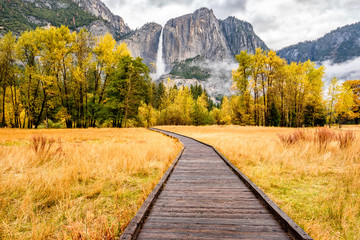 Meadow with boardwalk in Yosemite National Park Valley at autumn Wall mural