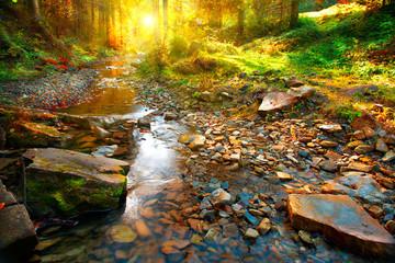 Autumn scene. Mountain spring, forest landscape