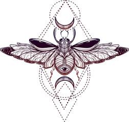 Beetle bug tattoo drawing. Scarab bug illustration