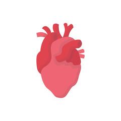 Human organs flat icon heart