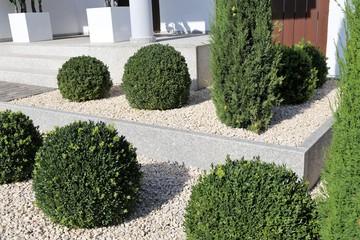 Vorgarten mit Ziersplitt und Buchsbaumkugeln