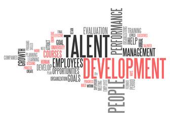 Word Cloud Talent Development