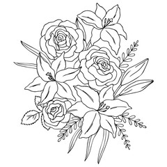vector contour illustration of lily rose flowers