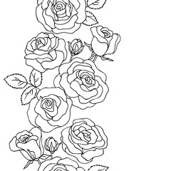 vector contour illustration of rose flowers