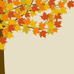Autumn maple. Tree with yellow leaves. Vector illustration on white background.