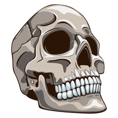 The old Skull