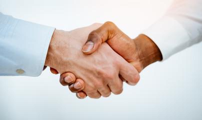 Multi-ethnic Business Deal