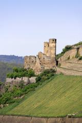 Burg Ehrenfels am Rhein bei Bingen