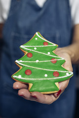 Hands holding christmas cookies