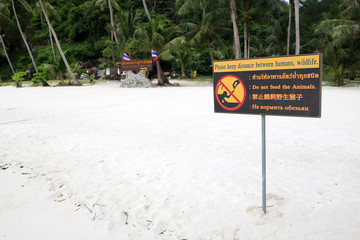 Multilanguage sign languages for don't feed the animals on the beach