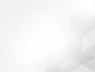 gray white abstract Hexagon vector background
