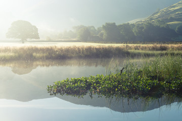 Misty summer morning by the river at Brotherswater in the English Lake District.