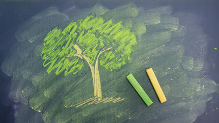 draw a tree picture by chalk pastels on a school blackboard.