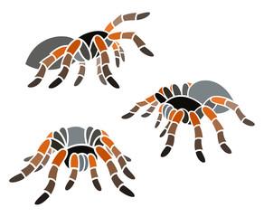 Stylized Spider - Tarantula