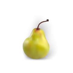 Pear isolated realistic white background green fruit yellow good fresh organic vector