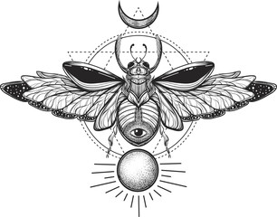 Beetle bug tattoo drawing. Scarab bug illustration on sacred geometry