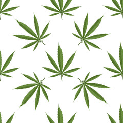 Seamless pattern of cannabis leaf on white background. Vector