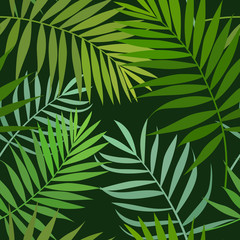 Seamless pattern of green palm leaves, floral seamless background. Vector