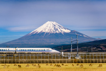 Fototapete - Mt. Fuji and Train