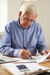 Portrait of modern senior man filling tax report or application form at home sitting at table with laptop