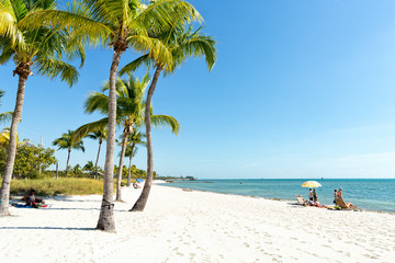 Fototapete - Palms on the Smathers Beach, Key West, FL, USA