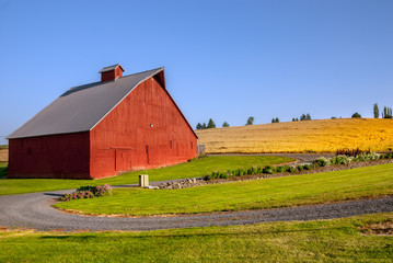Large sized red barn with a gravel road and wheat fields