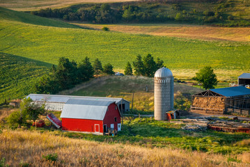 Farm in Idaho with wheat fields and red barn