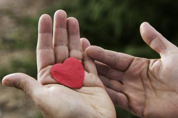 un emozione  amore nel palmo delle mani