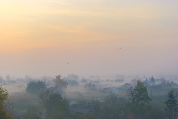 Private houses and trees are shrouded in fog at dawn. Several birds fly over the village.