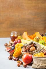 Fall autumn harvest background with pumpkin apple chestnut corn