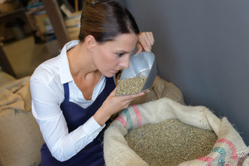 female coffee maker with burlap sacks smelling coffee beans