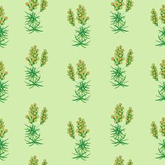 Prickly thrift. Vintage floral seamless pattern. Vector illustration.
