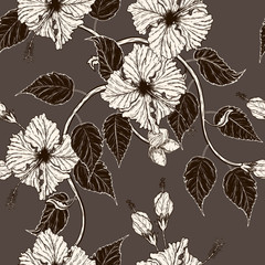 Hibiscus flower vector pattern by hand drawing.Flower vintage wallpaper on brown background.Hibiscus flower
