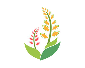 barley wheat weeds plants nature icon image vector