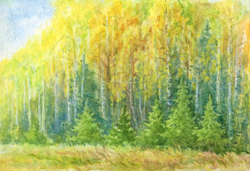 Autumn forest landscape watercolor drawing